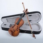 High Quality HJJ4 Size 1/4 Rosewood Violin with Case Bow Rosin Set Dark Golden