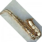 professional alto saxophone  for professional saxophonist recommending by buyer